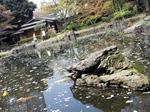0406017神池庭園.jpg